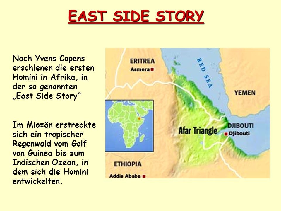 """EAST SIDE STORY Nach Yvens Copens erschienen die ersten Homini in Afrika, in der so genannten """"East Side Story"""" Im Miozän erstreckte sich ein tropisch"""