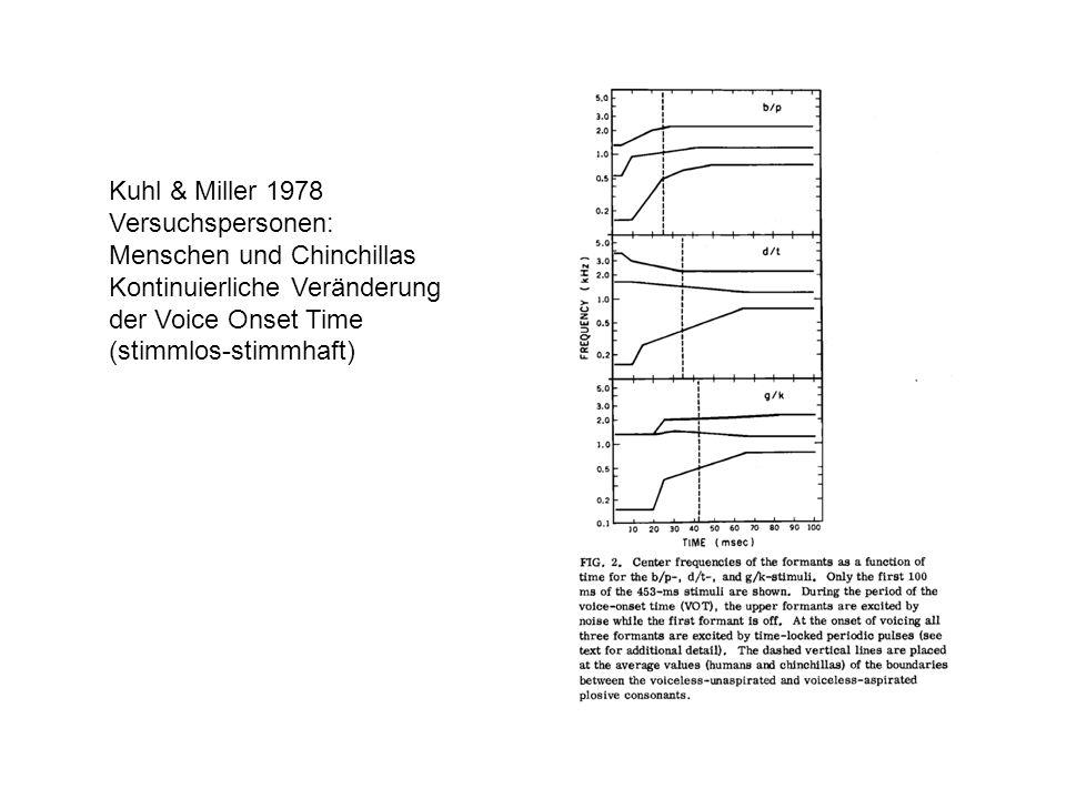 Kuhl & Miller 1978 Versuchspersonen: Menschen und Chinchillas Kontinuierliche Veränderung der Voice Onset Time (stimmlos-stimmhaft)