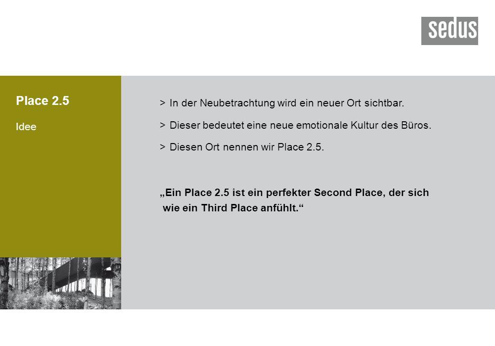 Place 2.5 Idee >In der Neubetrachtung wird ein neuer Ort sichtbar. >Dieser bedeutet eine neue emotionale Kultur des Büros. >Diesen Ort nennen wir Plac