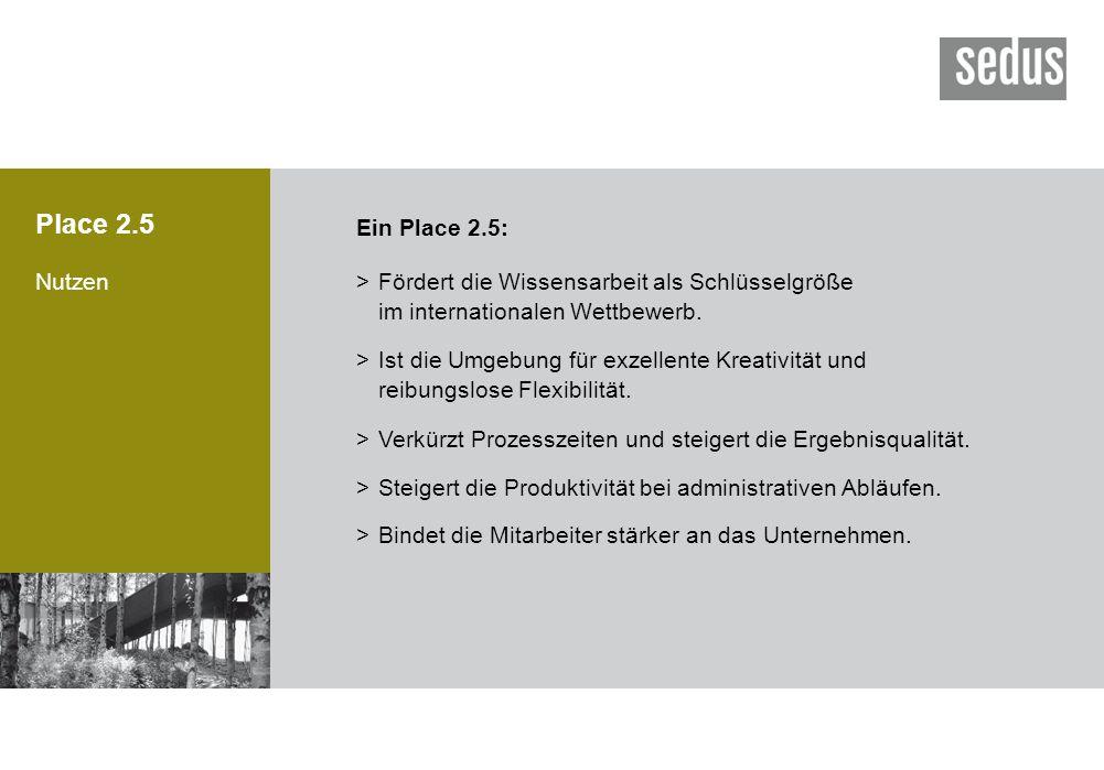 Place 2.5 Nutzen Ein Place 2.5: >Fördert die Wissensarbeit als Schlüsselgröße im internationalen Wettbewerb. >Ist die Umgebung für exzellente Kreativi