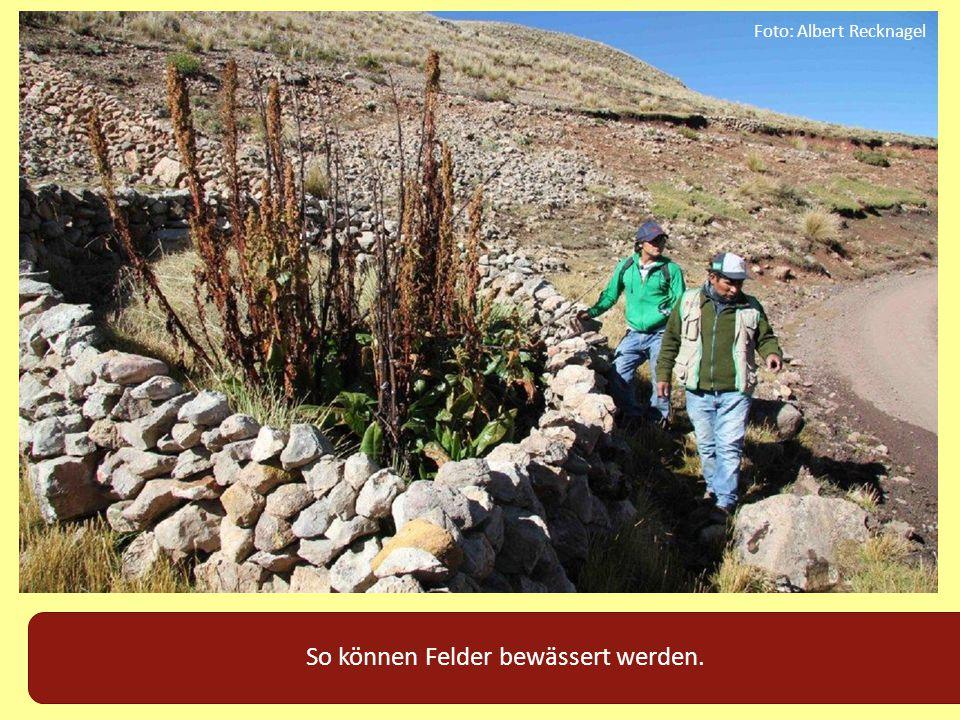So können Felder bewässert werden. Foto: Albert Recknagel