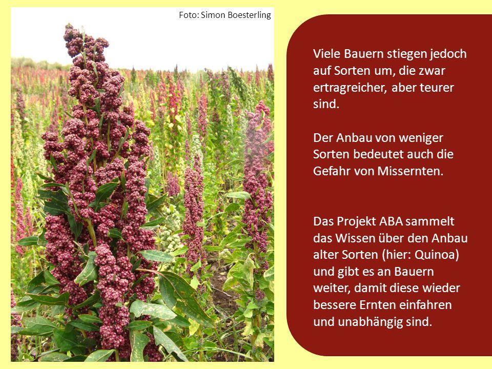 Wie genau hilft das ABA-Projekt den Bauern und ihren Familien?
