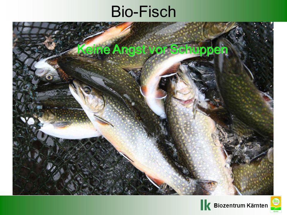 Biozentrum Kärnten Bio-Fisch Keine Angst vor Schuppen