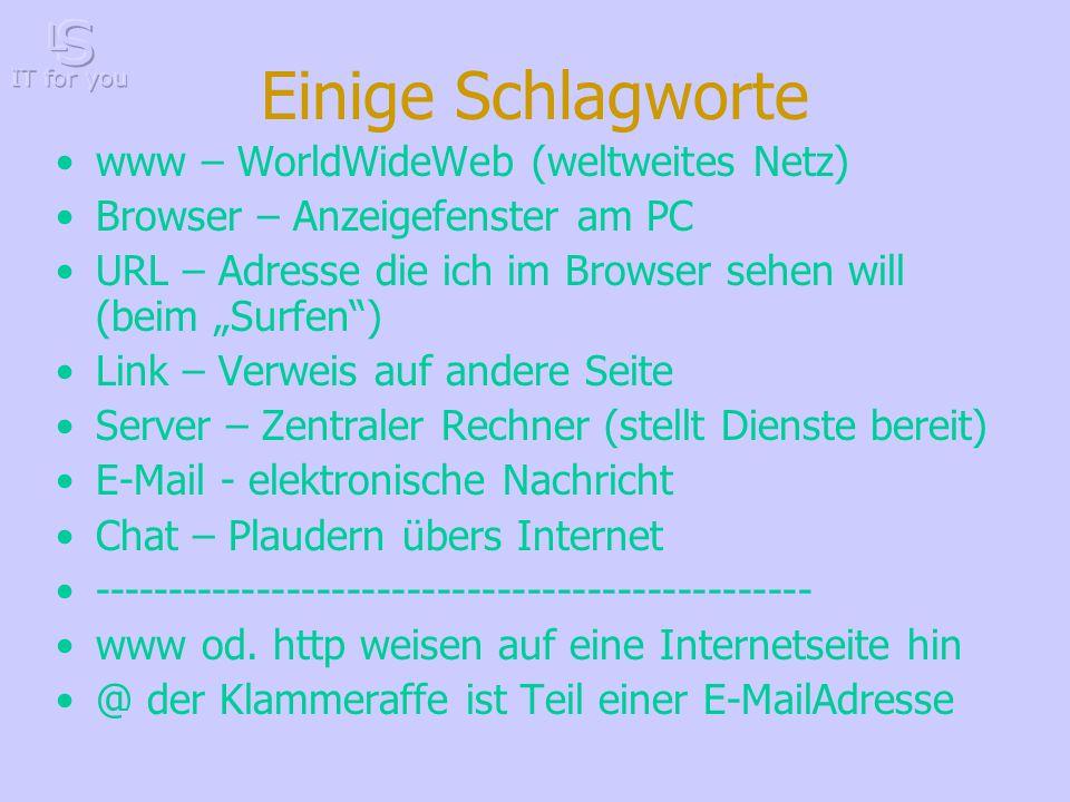 """Einige Schlagworte www – WorldWideWeb (weltweites Netz) Browser – Anzeigefenster am PC URL – Adresse die ich im Browser sehen will (beim """"Surfen ) Link – Verweis auf andere Seite Server – Zentraler Rechner (stellt Dienste bereit) E-Mail - elektronische Nachricht Chat – Plaudern übers Internet ------------------------------------------------ www od."""