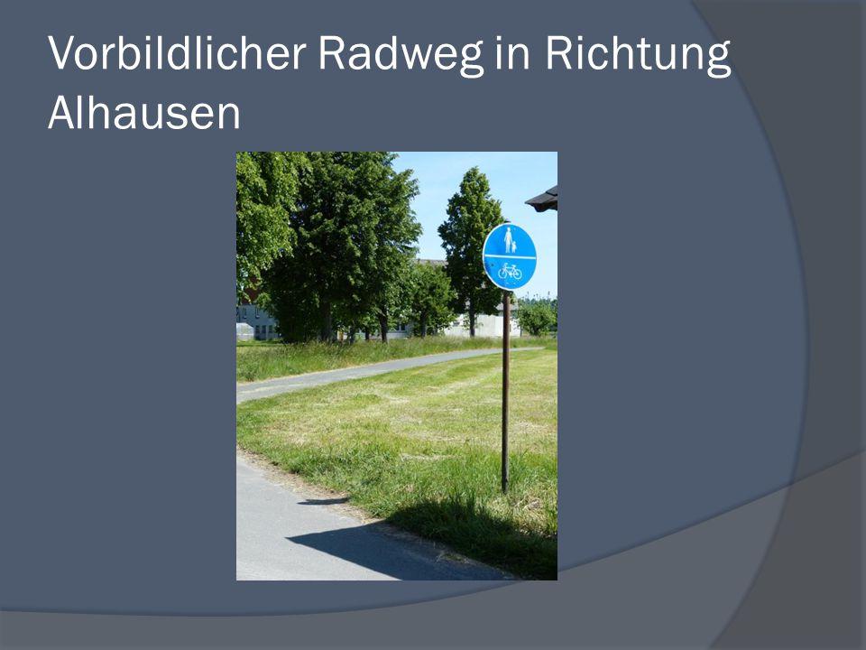 Vorbildlicher Radweg in Richtung Alhausen