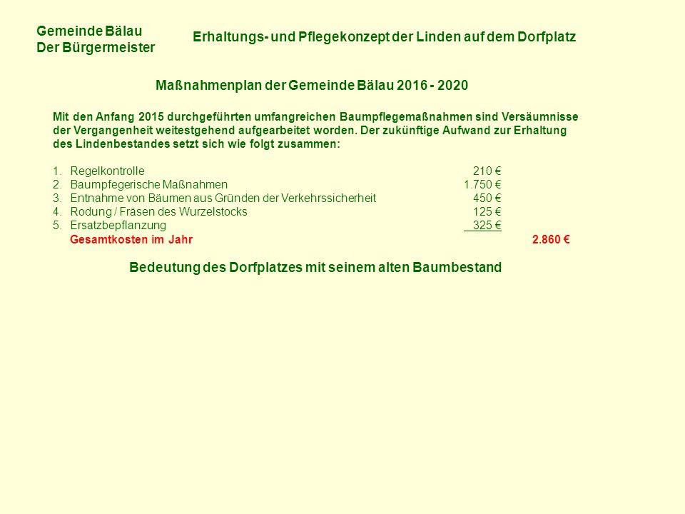 Gemeinde Bälau Der Bürgermeister Erhaltungs- und Pflegekonzept der Linden auf dem Dorfplatz Maßnahmenplan der Gemeinde Bälau 2016 - 2020 Mit den Anfang 2015 durchgeführten umfangreichen Baumpflegemaßnahmen sind Versäumnisse der Vergangenheit weitestgehend aufgearbeitet worden.