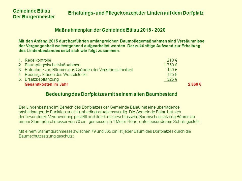 Gemeinde Bälau Der Bürgermeister Erhaltungs- und Pflegekonzept der Linden auf dem Dorfplatz Maßnahmenplan der Gemeinde Bälau 2016 - 2020 Mit den Anfan