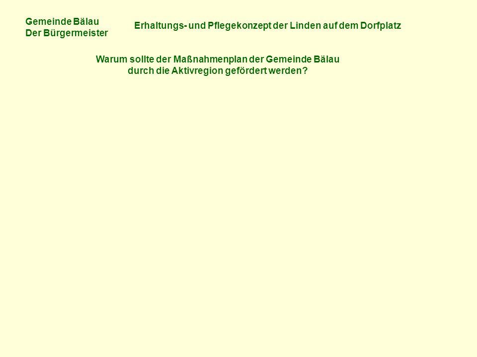 Gemeinde Bälau Der Bürgermeister Erhaltungs- und Pflegekonzept der Linden auf dem Dorfplatz Warum sollte der Maßnahmenplan der Gemeinde Bälau durch die Aktivregion gefördert werden