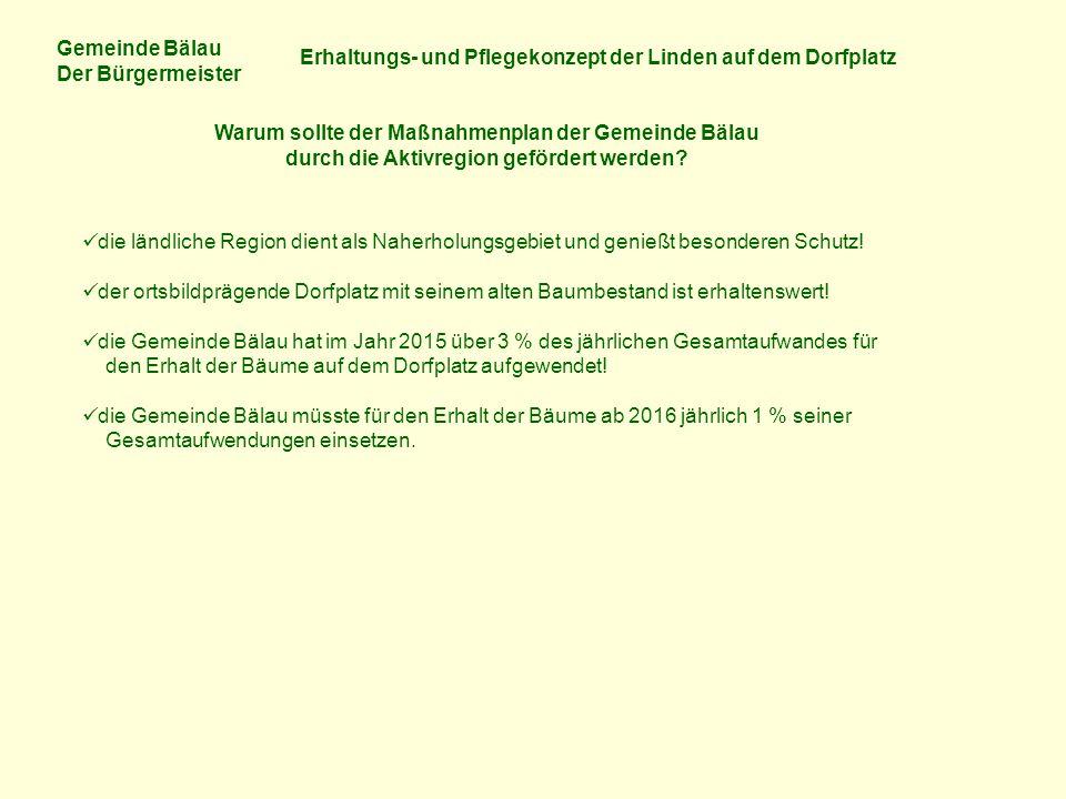Gemeinde Bälau Der Bürgermeister Erhaltungs- und Pflegekonzept der Linden auf dem Dorfplatz Warum sollte der Maßnahmenplan der Gemeinde Bälau durch di