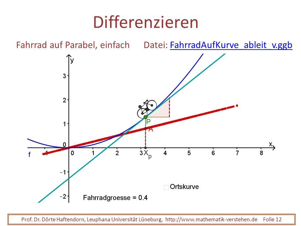 Prof. Dr. Dörte Haftendorn, Leuphana Universität Lüneburg, http://www.mathematik-verstehen.de Folie 12 Differenzieren Fahrrad auf Parabel, einfachDate