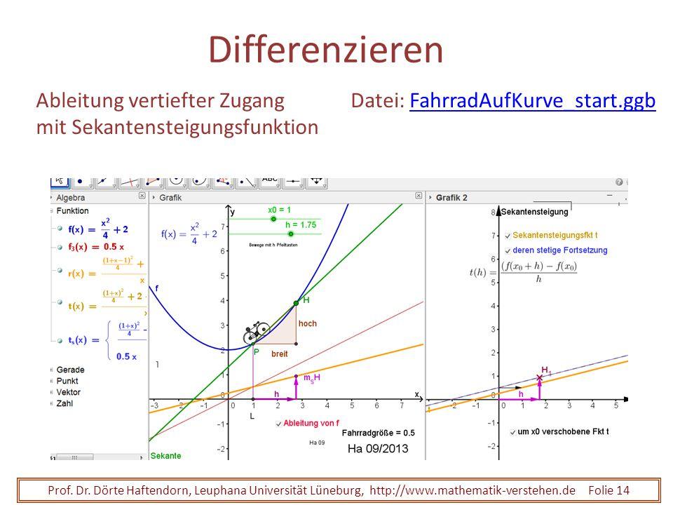 Prof. Dr. Dörte Haftendorn, Leuphana Universität Lüneburg, http://www.mathematik-verstehen.de Folie 14 Differenzieren Ableitung vertiefter Zugang mit