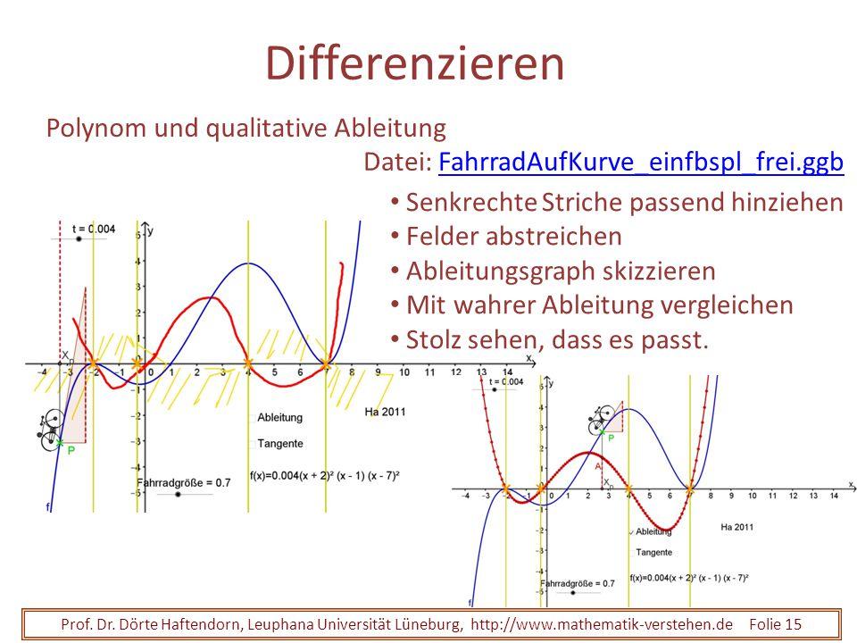 Prof. Dr. Dörte Haftendorn, Leuphana Universität Lüneburg, http://www.mathematik-verstehen.de Folie 15 Differenzieren Polynom und qualitative Ableitun