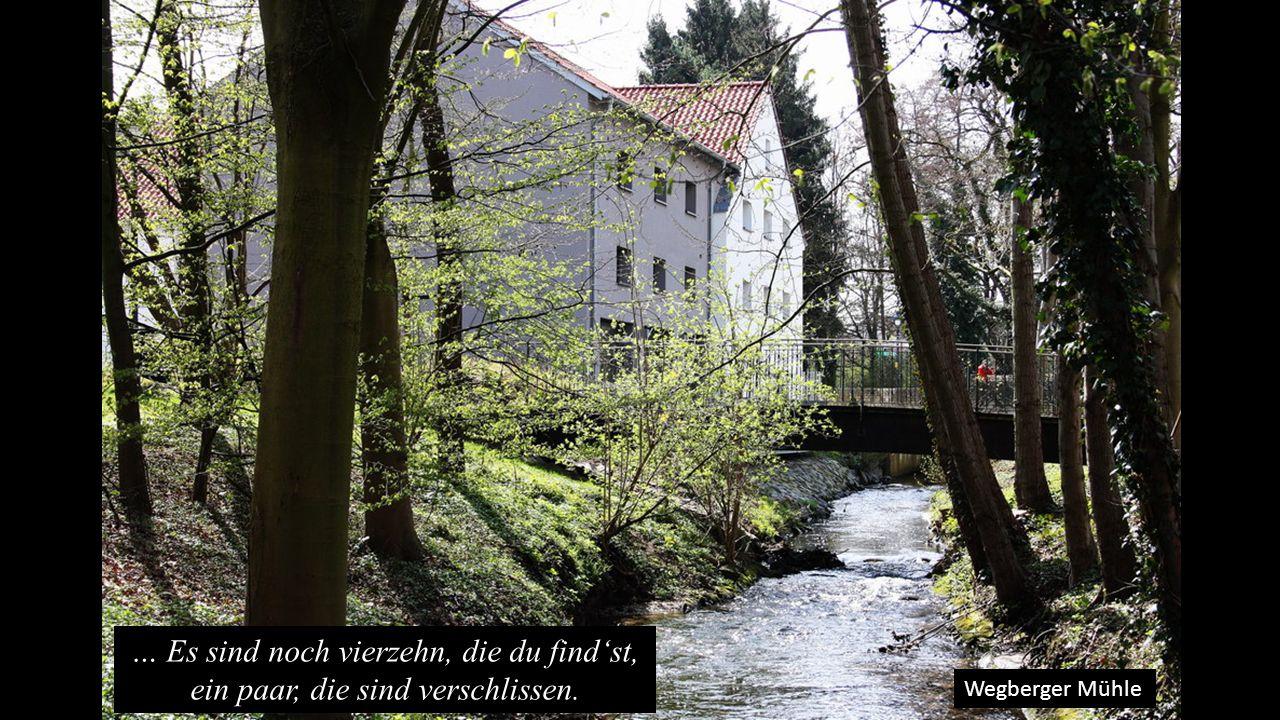 Wegberger Mühle … Es sind noch vierzehn, die du find'st, ein paar, die sind verschlissen.