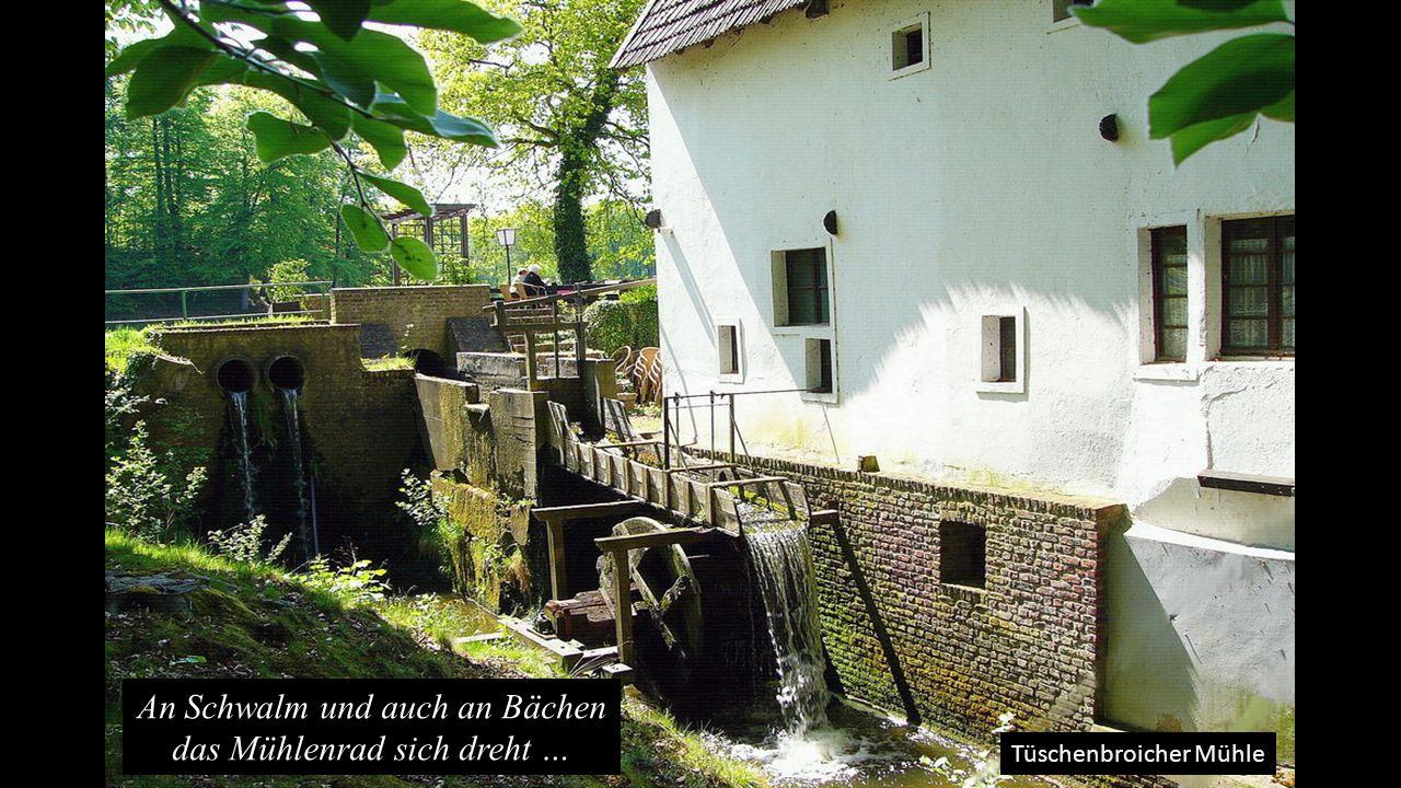 Tüschenbroicher Mühle … Vom Wasser es getrieben, ein Glück, dass das noch geht..