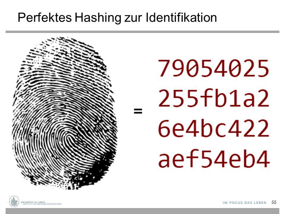 Perfektes Hashing zur Identifikation 55