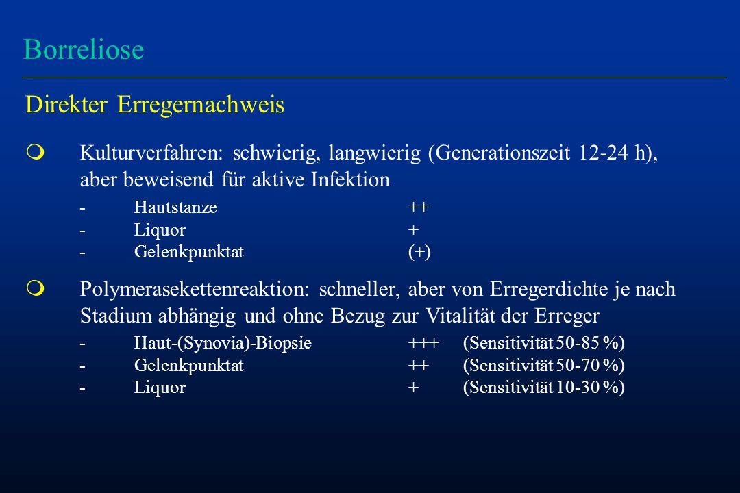 Borreliose Direkter Erregernachweis m Kulturverfahren: schwierig, langwierig (Generationszeit 12-24 h), aber beweisend für aktive Infektion - Hautstanze++ - Liquor+ - Gelenkpunktat(+) m Polymerasekettenreaktion: schneller, aber von Erregerdichte je nach Stadium abhängig und ohne Bezug zur Vitalität der Erreger - Haut-(Synovia)-Biopsie+++(Sensitivität 50-85 %) - Gelenkpunktat++(Sensitivität 50-70 %) - Liquor+(Sensitivität 10-30 %)