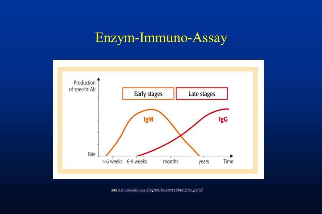 Enzym-Immuno-Assay aus www.biomerieux-diagnostics.com/vidasr-lyme-panelwww.biomerieux-diagnostics.com/vidasr-lyme-panel