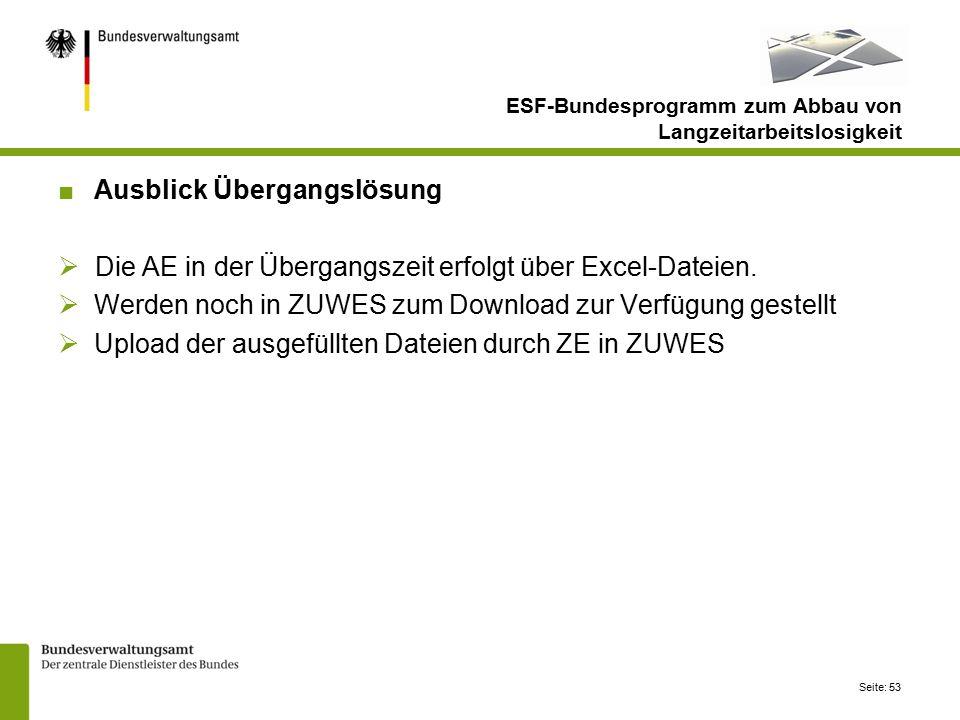 Seite: 53 ESF-Bundesprogramm zum Abbau von Langzeitarbeitslosigkeit ■Ausblick Übergangslösung  Die AE in der Übergangszeit erfolgt über Excel-Dateien.