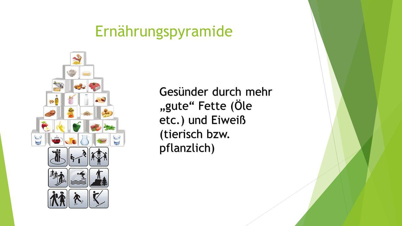"""Ernährungspyramide Gesünder durch mehr """"gute"""" Fette (Öle etc.) und Eiweiß (tierisch bzw. pflanzlich)"""