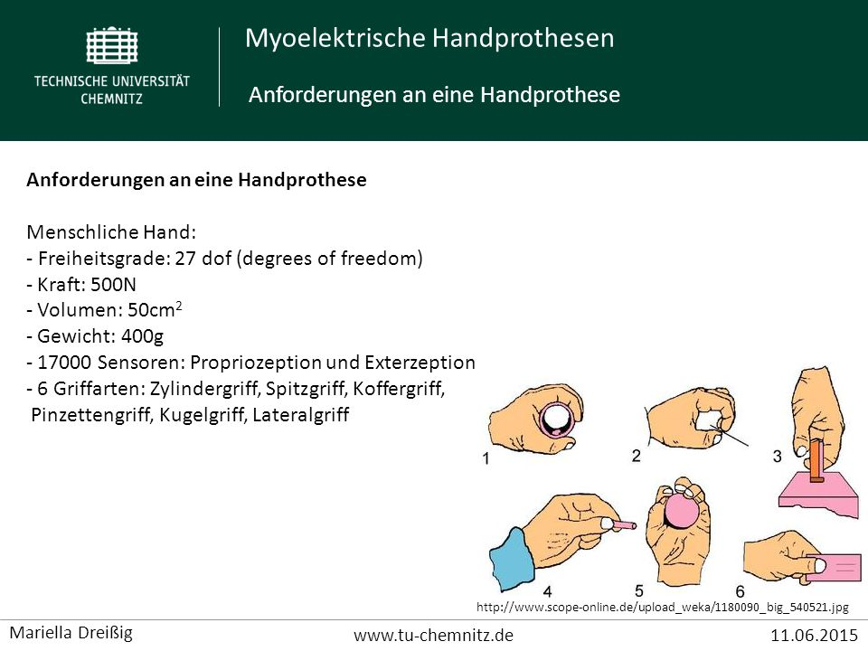 Myoelektrische Handprothesen www.tu-chemnitz.de11.06.2015 Mariella Dreißig Anforderungen an eine Handprothese Menschliche Hand: - Freiheitsgrade: 27 dof (degrees of freedom) - Kraft: 500N - Volumen: 50cm 2 - Gewicht: 400g - 17000 Sensoren: Propriozeption und Exterzeption - 6 Griffarten: Zylindergriff, Spitzgriff, Koffergriff, Pinzettengriff, Kugelgriff, Lateralgriff http://www.scope-online.de/upload_weka/1180090_big_540521.jpg Anforderungen an eine Handprothese