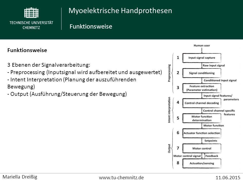 Myoelektrische Handprothesen www.tu-chemnitz.de11.06.2015 Mariella Dreißig Signalverarbeitung - Kleines Signal:  V- bis mV-Bereich - A/D-Wandler (12 Bit Tiefe) - Verstärker (Verstärkung um den Faktor 100) - Filter (Hoch-, Tiefpass) Funktionsweise