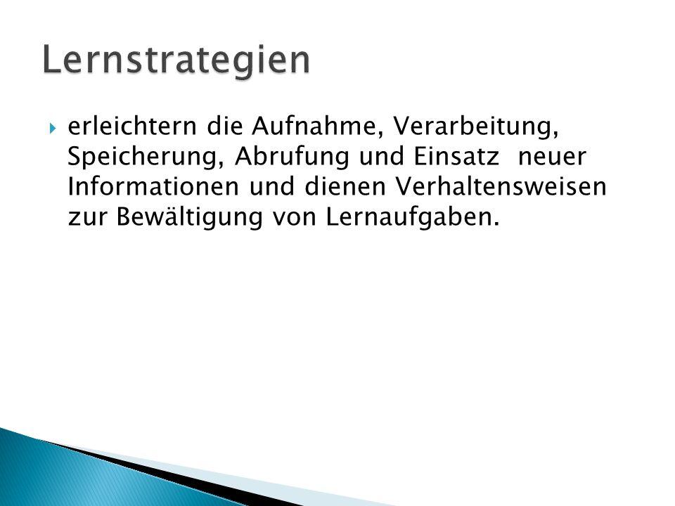  erleichtern die Aufnahme, Verarbeitung, Speicherung, Abrufung und Einsatz neuer Informationen und dienen Verhaltensweisen zur Bewältigung von Lernau