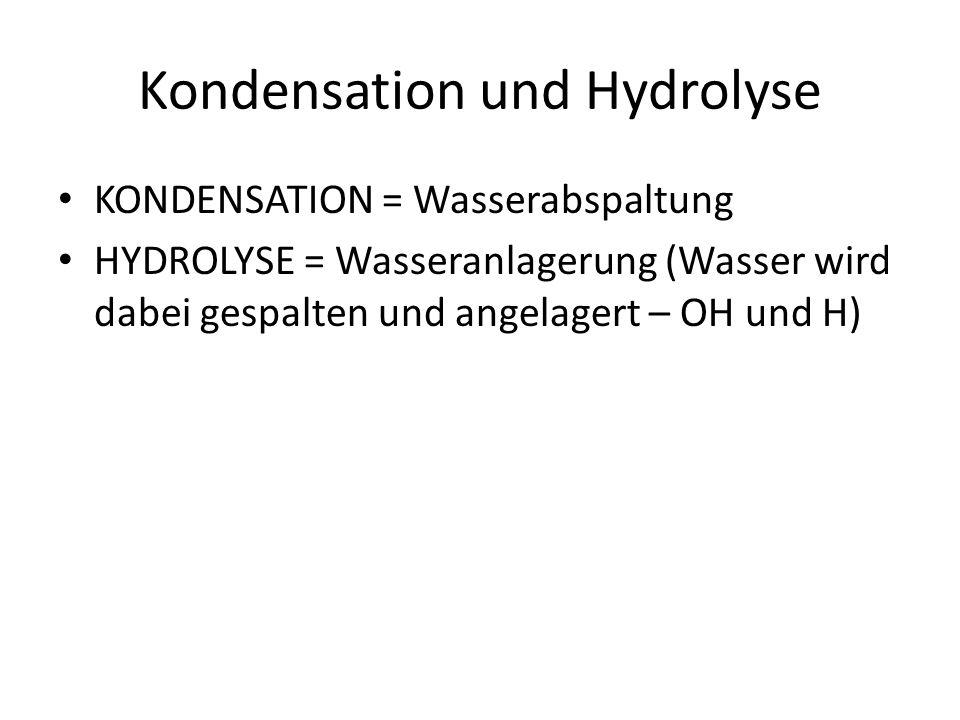 Kondensation und Hydrolyse KONDENSATION = Wasserabspaltung HYDROLYSE = Wasseranlagerung (Wasser wird dabei gespalten und angelagert – OH und H)