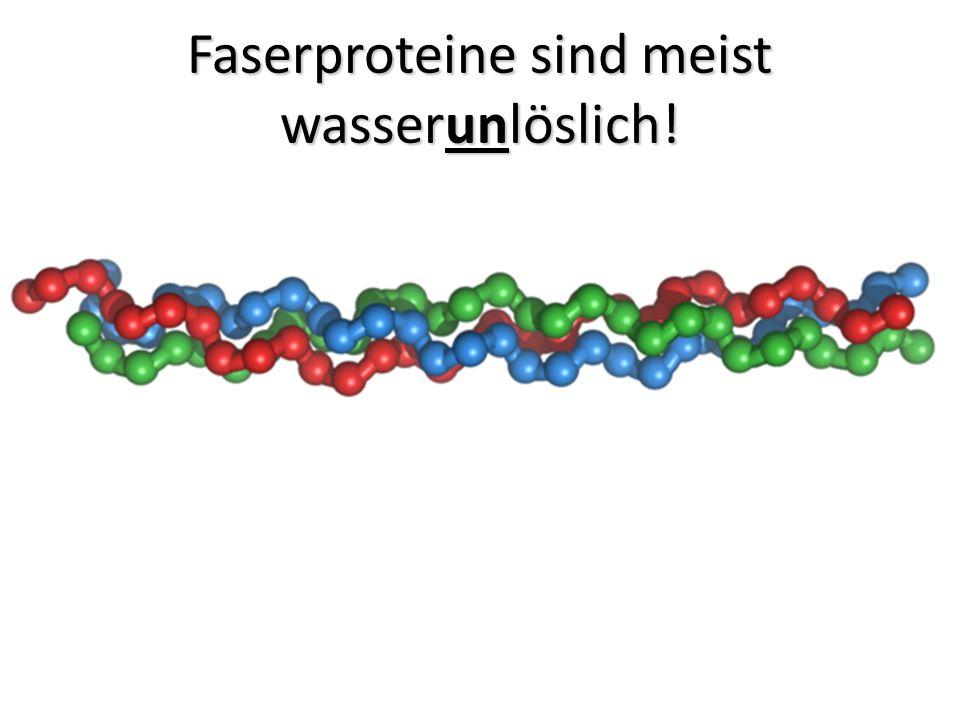Faserproteine sind meist wasserunlöslich!
