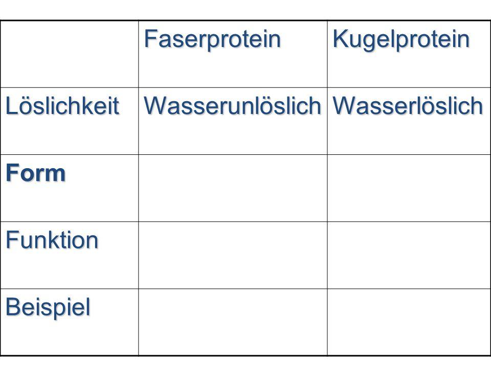 FaserproteinKugelprotein LöslichkeitWasserunlöslichWasserlöslich Form Funktion Beispiel