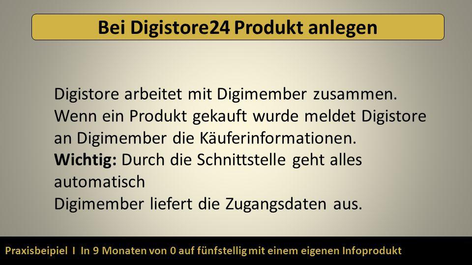 Praxisbeipiel I In 9 Monaten von 0 auf fünfstellig mit einem eigenen Infoprodukt Bei Digistore24 Produkt anlegen Digistore arbeitet mit Digimember zus