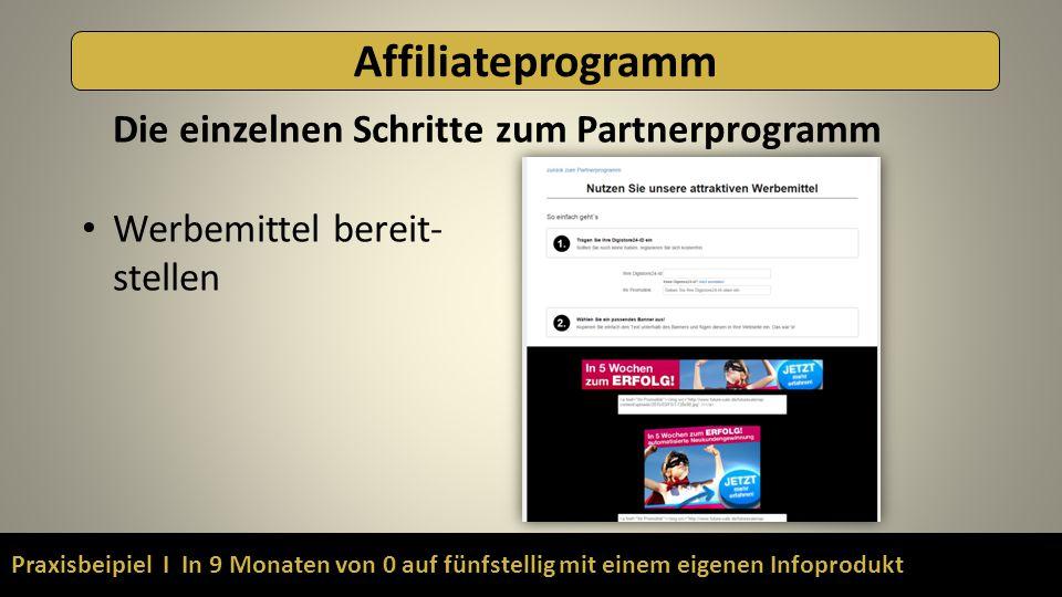 Praxisbeipiel I In 9 Monaten von 0 auf fünfstellig mit einem eigenen Infoprodukt Affiliateprogramm Die einzelnen Schritte zum Partnerprogramm Werbemittel bereit- stellen