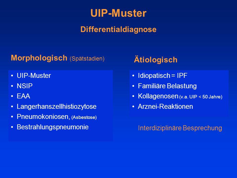 UIP-Muster Differentialdiagnose UIP-Muster NSIP EAA Langerhanszellhistiozytose Pneumokoniosen, (Asbestose) Bestrahlungspneumonie Morphologisch (Spätstadien) Ätiologisch Idiopatisch = IPF Familiäre Belastung Kollagenosen (v.a.