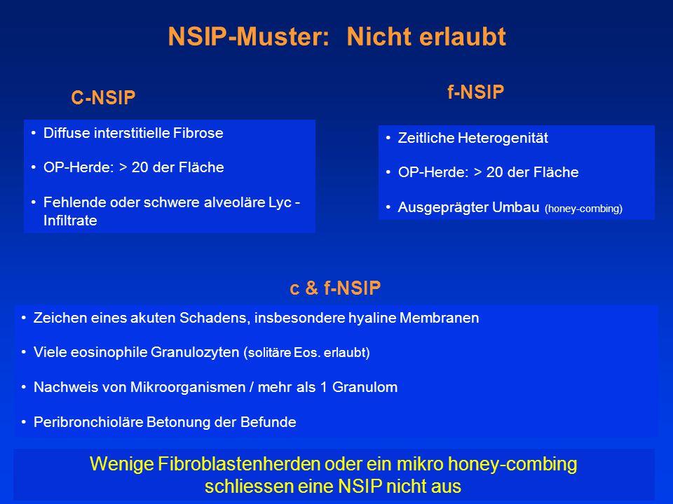 NSIP-Muster: Nicht erlaubt C-NSIP Diffuse interstitielle Fibrose OP-Herde: > 20 der Fläche Fehlende oder schwere alveoläre Lyc - Infiltrate f-NSIP Zeitliche Heterogenität OP-Herde: > 20 der Fläche Ausgeprägter Umbau (honey-combing) Wenige Fibroblastenherden oder ein mikro honey-combing schliessen eine NSIP nicht aus c & f-NSIP Zeichen eines akuten Schadens, insbesondere hyaline Membranen Viele eosinophile Granulozyten ( solitäre Eos.