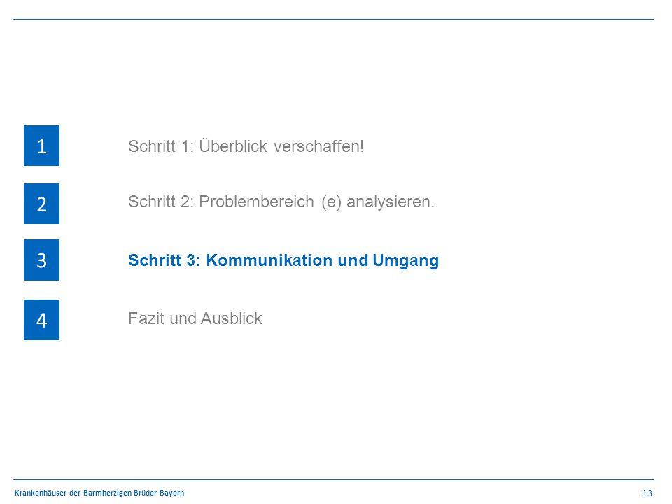 13 Krankenhäuser der Barmherzigen Brüder Bayern 1 4 3 2 QSR – Methodik 1 4 3 2 Schritt 2: Problembereich (e) analysieren.