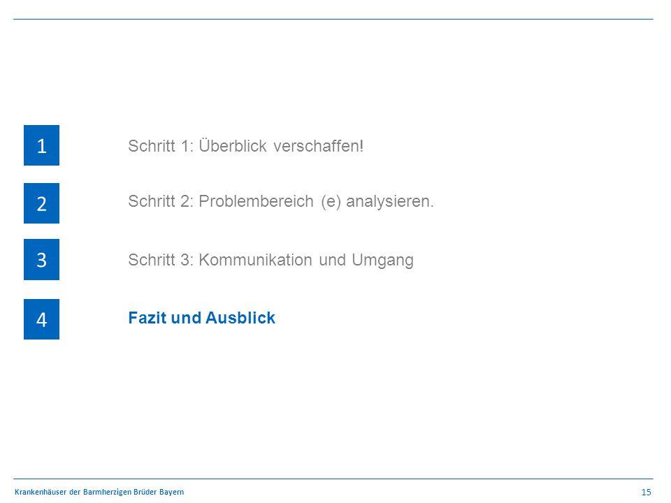 15 Krankenhäuser der Barmherzigen Brüder Bayern 1 4 3 2 QSR – Methodik 1 4 3 2 Schritt 2: Problembereich (e) analysieren.