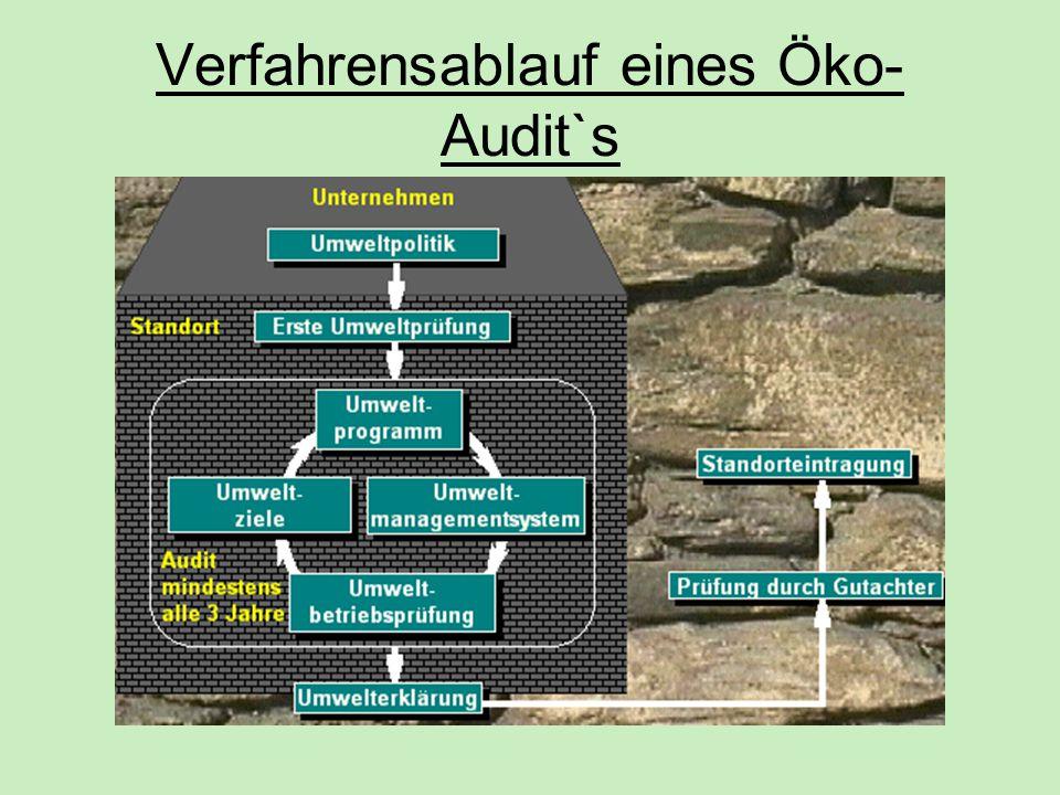 Verfahrensablauf eines Öko- Audit`s