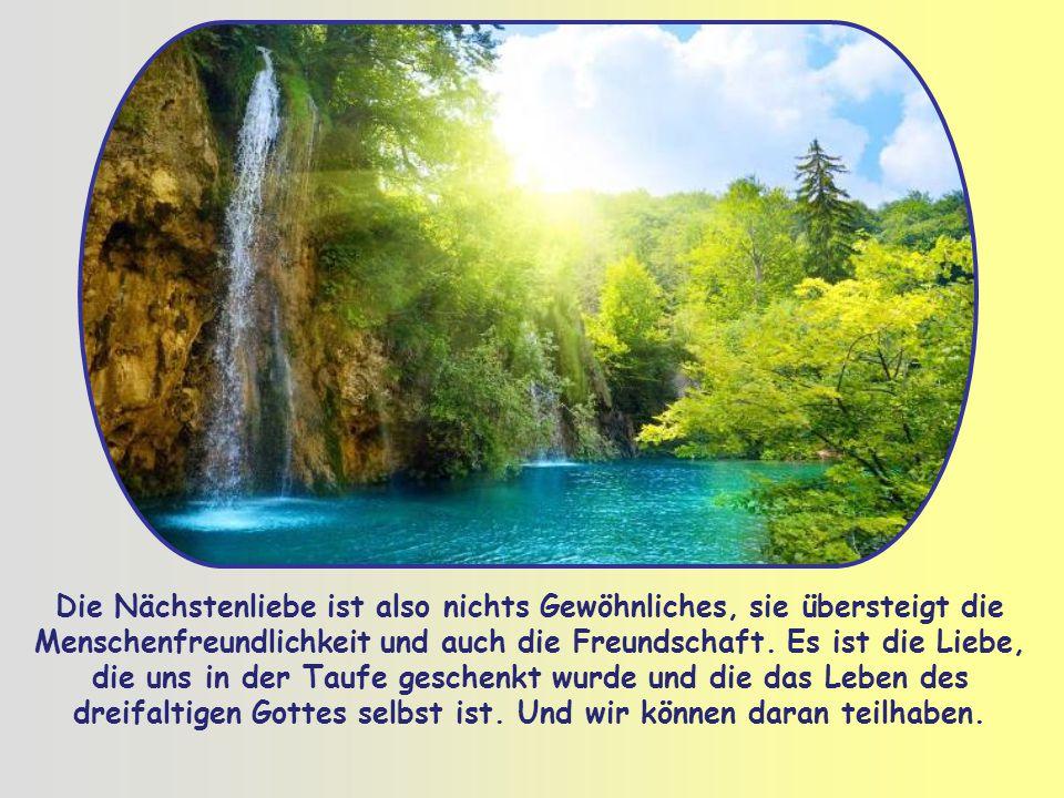 """Das gelingt uns nur mit der Hilfe Gottes; das kann nur die Liebe Gottes selbst bewirken, die ausgegossen ist """"in unsere Herzen durch den Heiligen Geis"""