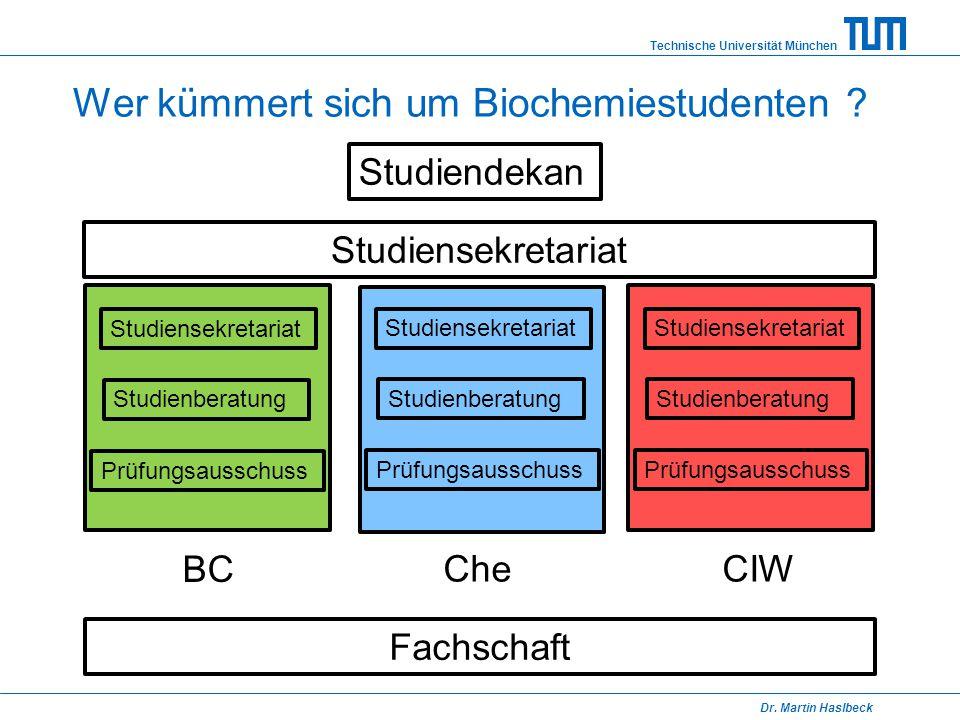 Technische Universität München Dr. Martin Haslbeck Wer kümmert sich um Biochemiestudenten ? Studiendekan Studiensekretariat Studienberatung Prüfungsau