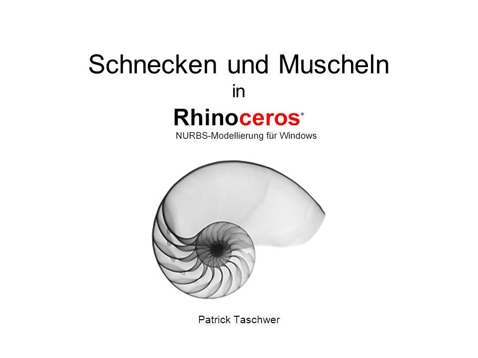 Schnecken und Muscheln in Patrick Taschwer