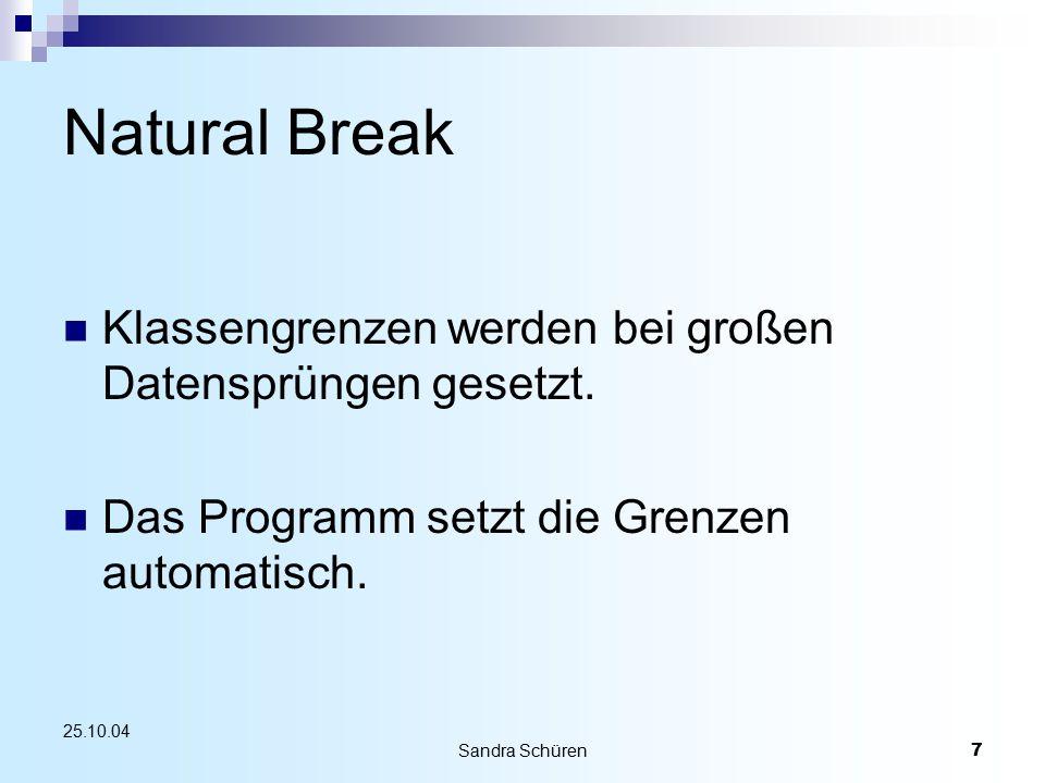 Sandra Schüren7 25.10.04 Natural Break Klassengrenzen werden bei großen Datensprüngen gesetzt. Das Programm setzt die Grenzen automatisch.