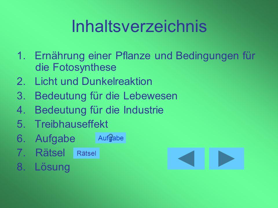 Die Fotosynthese- Bedeutung für das Leben auf der Erde von P. Schmidt Goethe – Gymnasium - Reichenbach