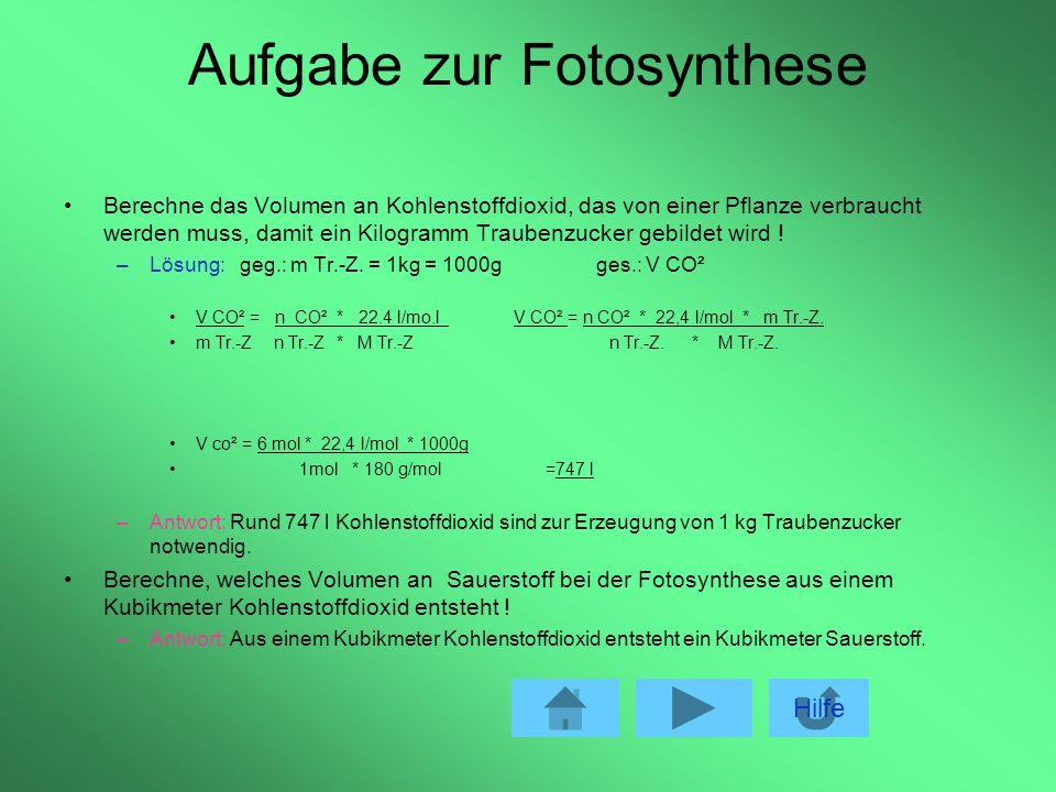 Treibhauseffekt Verringerung der Fotosynthese durchführenden Lebewesen z.B.: durch Brandrodung für die Erzeugung von Lebensmitteln, Zellulose und Papi