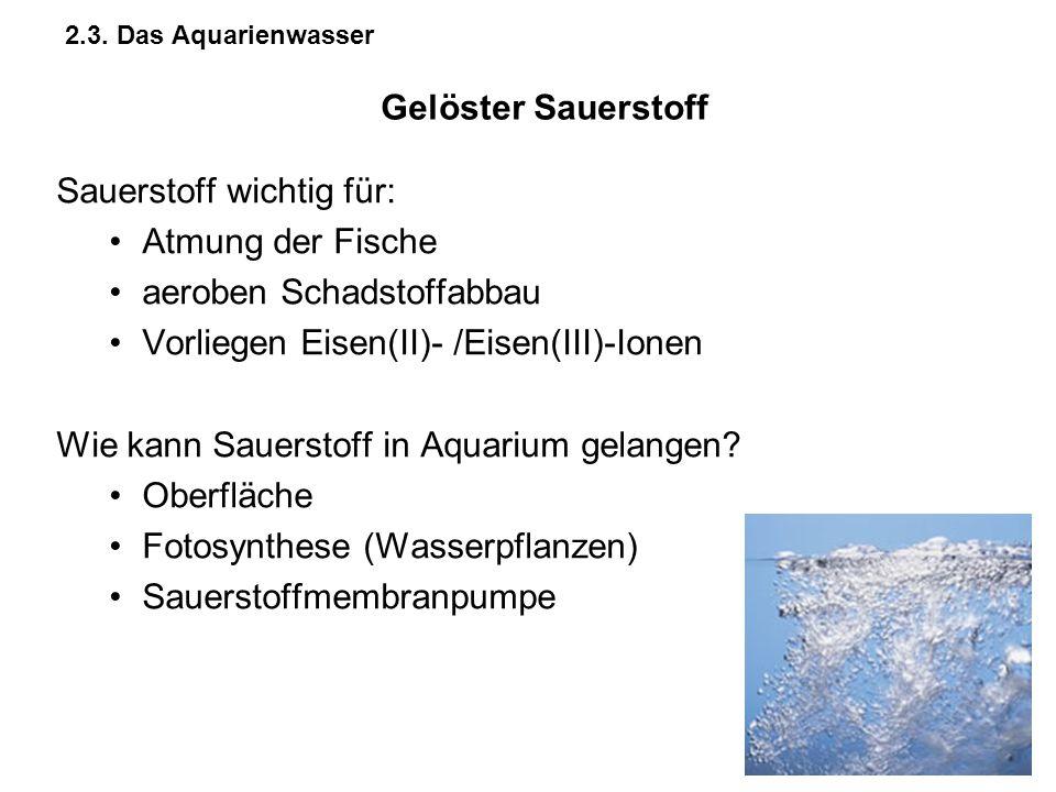 2.3. Das Aquarienwasser Sauerstoff wichtig für: Atmung der Fische aeroben Schadstoffabbau Vorliegen Eisen(II)- /Eisen(III)-Ionen Wie kann Sauerstoff i