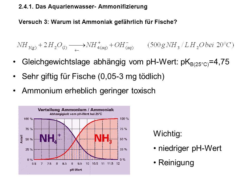 2.4.1. Das Aquarienwasser- Ammonifizierung Versuch 3: Warum ist Ammoniak gefährlich für Fische? Gleichgewichtslage abhängig vom pH-Wert: pK B(25°C) =4