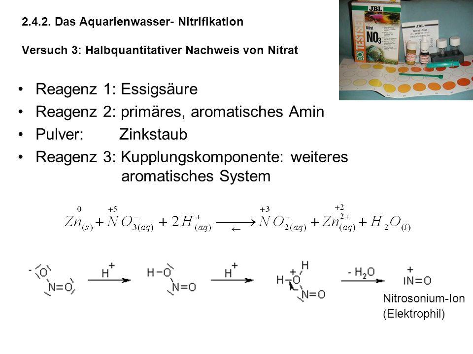 2.4.2. Das Aquarienwasser- Nitrifikation Versuch 3: Halbquantitativer Nachweis von Nitrat Reagenz 1: Essigsäure Reagenz 2: primäres, aromatisches Amin