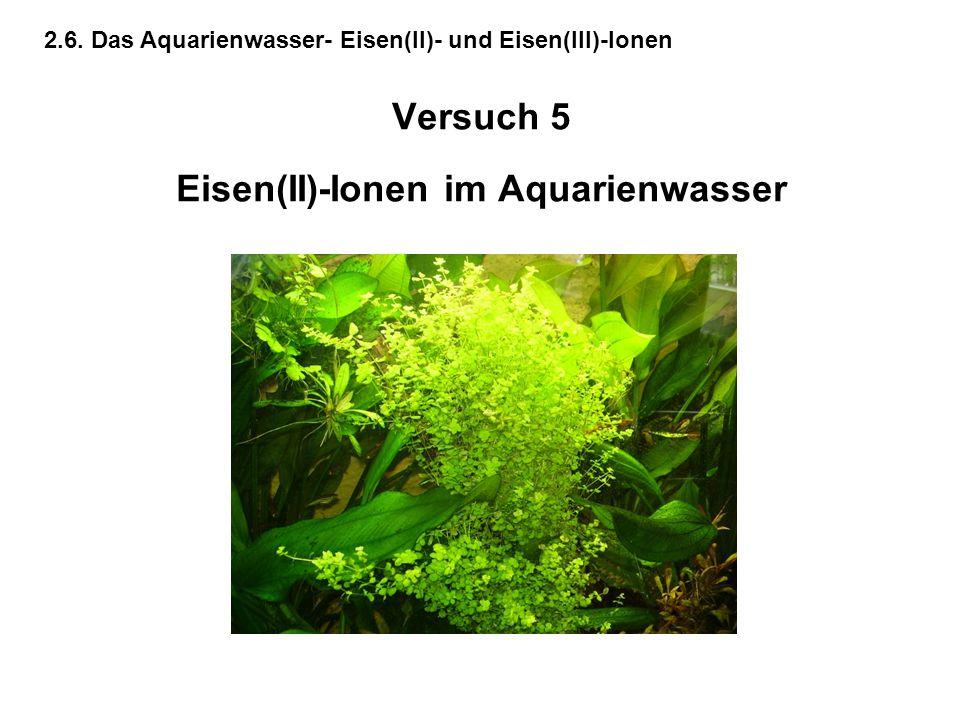 Versuch 5 Eisen(II)-Ionen im Aquarienwasser 2.6. Das Aquarienwasser- Eisen(II)- und Eisen(III)-Ionen