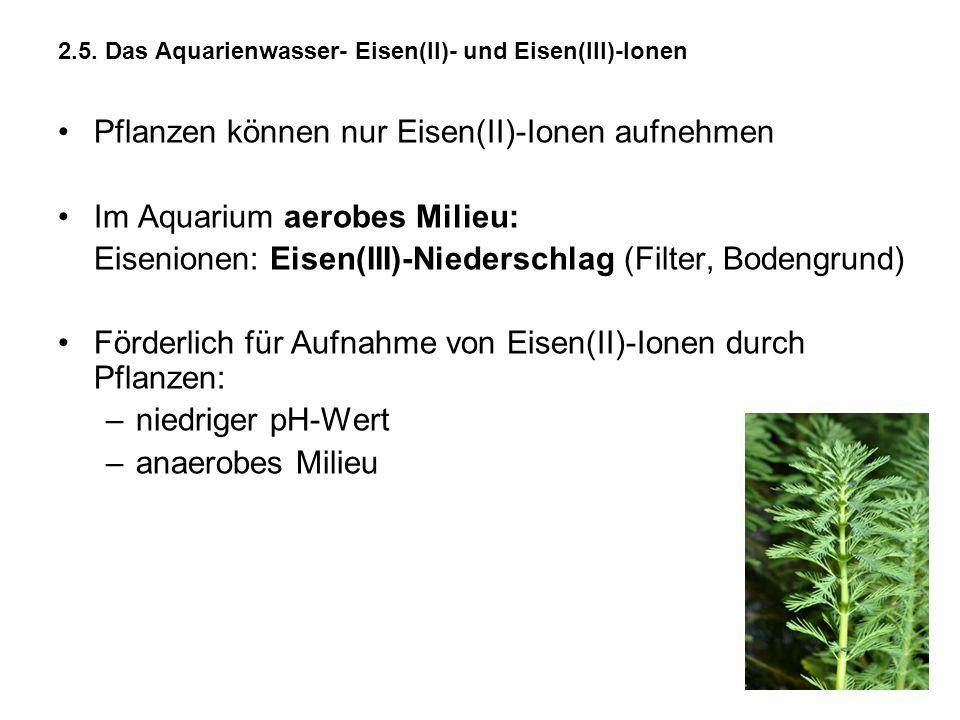 2.5. Das Aquarienwasser- Eisen(II)- und Eisen(III)-Ionen Pflanzen können nur Eisen(II)-Ionen aufnehmen Im Aquarium aerobes Milieu: Eisenionen: Eisen(I