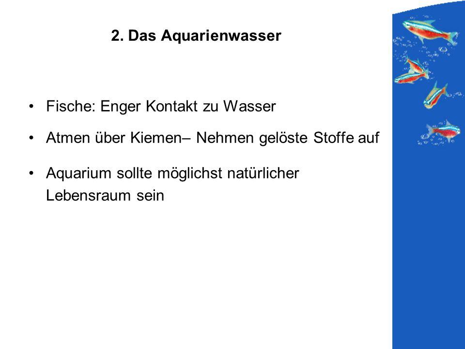 2. Das Aquarienwasser Fische: Enger Kontakt zu Wasser Atmen über Kiemen– Nehmen gelöste Stoffe auf Aquarium sollte möglichst natürlicher Lebensraum se
