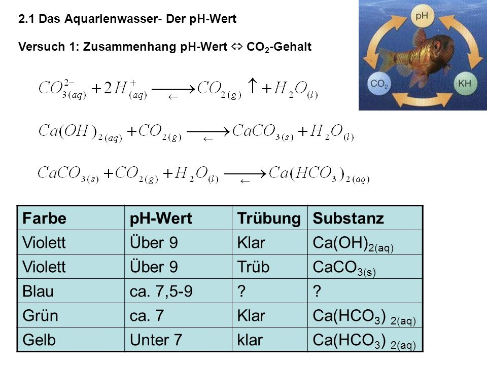 Der pH-Wert im Aquarium pH-Wert abhängig von Carbonathärte & CO 2 -Gehalt: Massenwirkungsgesetz: pH-Wert umso niedriger je höher CO 2 -Gehalt je niedriger Konzentration an Hydrogencarbonat-Ionen 2.1 Das Aquarienwasser