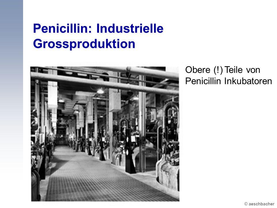 © aeschbacher Penicillin: Industrielle Grossproduktion Obere (!) Teile von Penicillin Inkubatoren